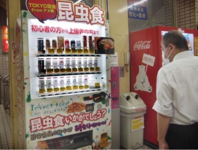 식용 곤충 자판기