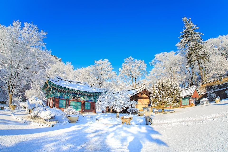 마곡사의 겨울