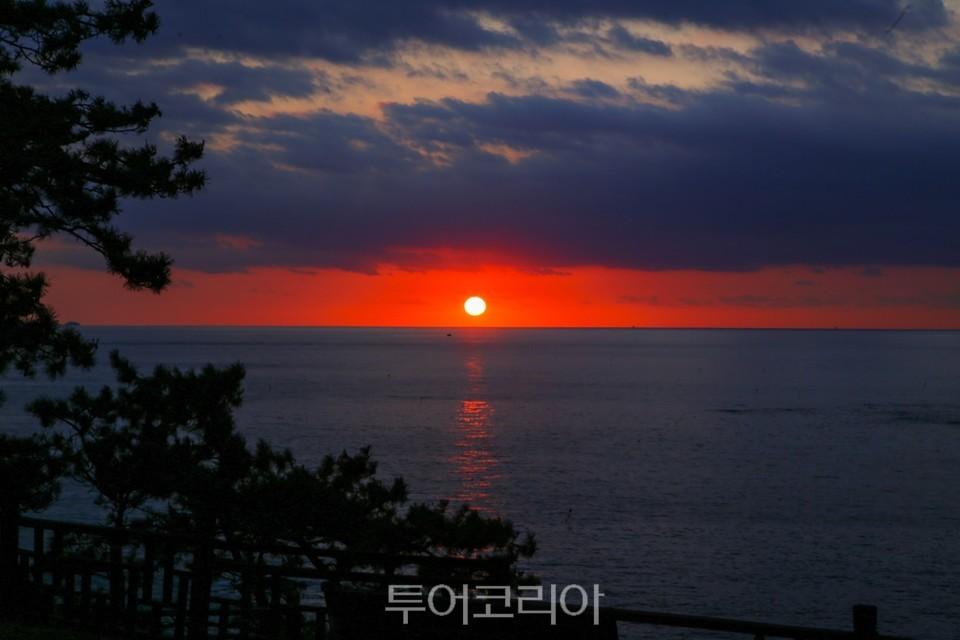 서천 동백정