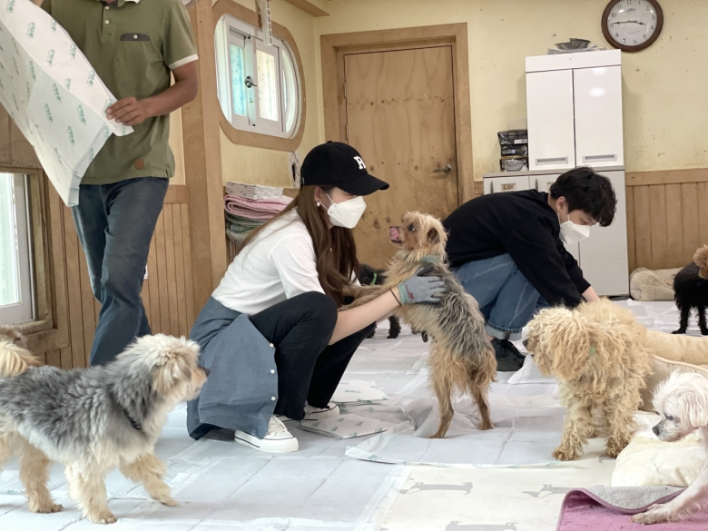 유기견 봉사활동중인 배우 성유리[하림펫푸드 제공]