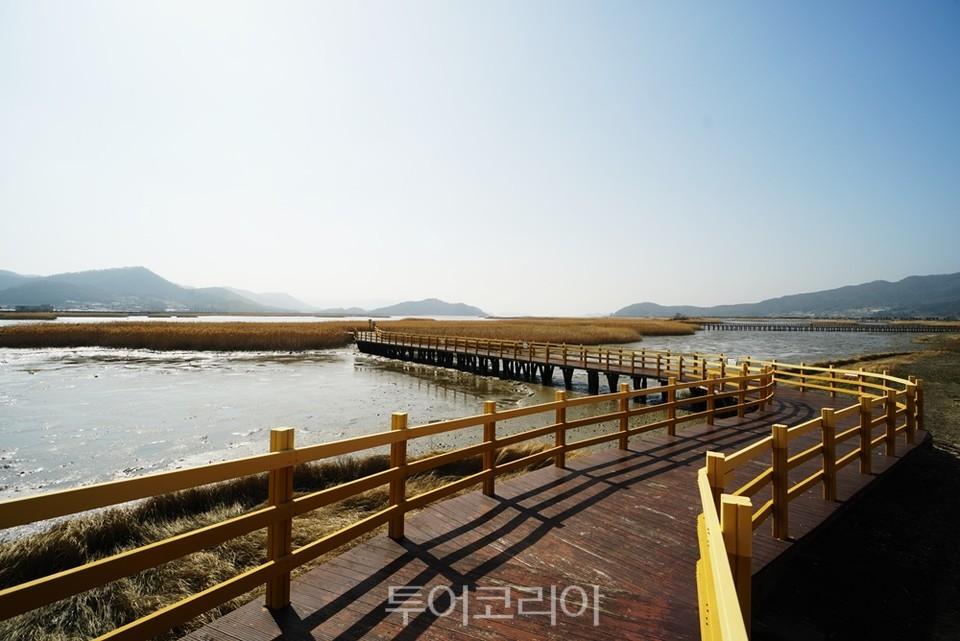 강진만 생태공원