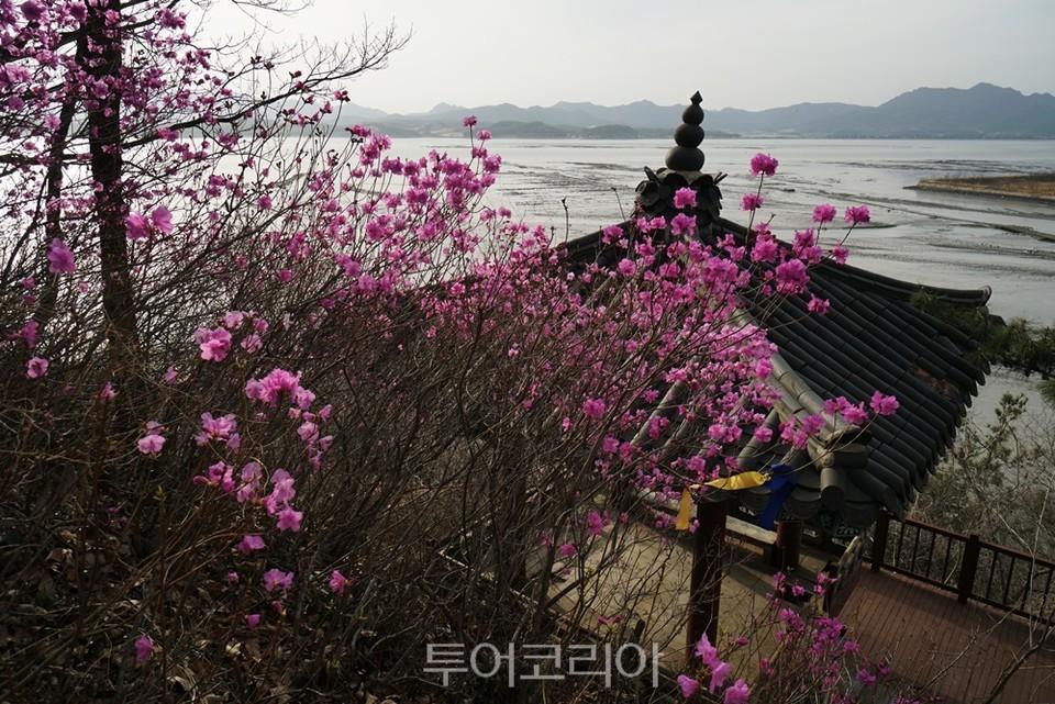 남파랑길 강진 82코스 '세심정'