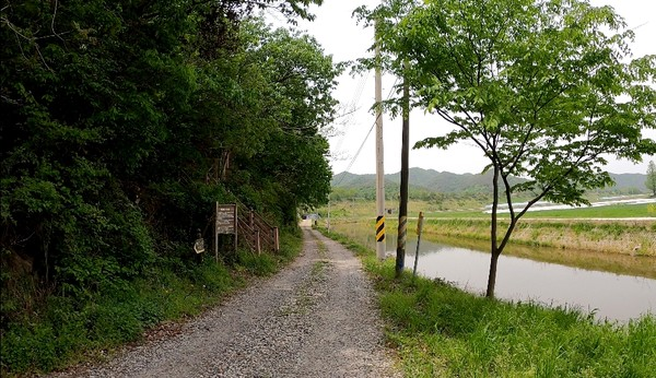 길 좌측으로 산길로 오르는 진입로가 보인다.