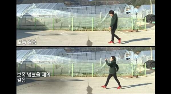 KBS '생로병사의 비밀' 캡쳐 사진