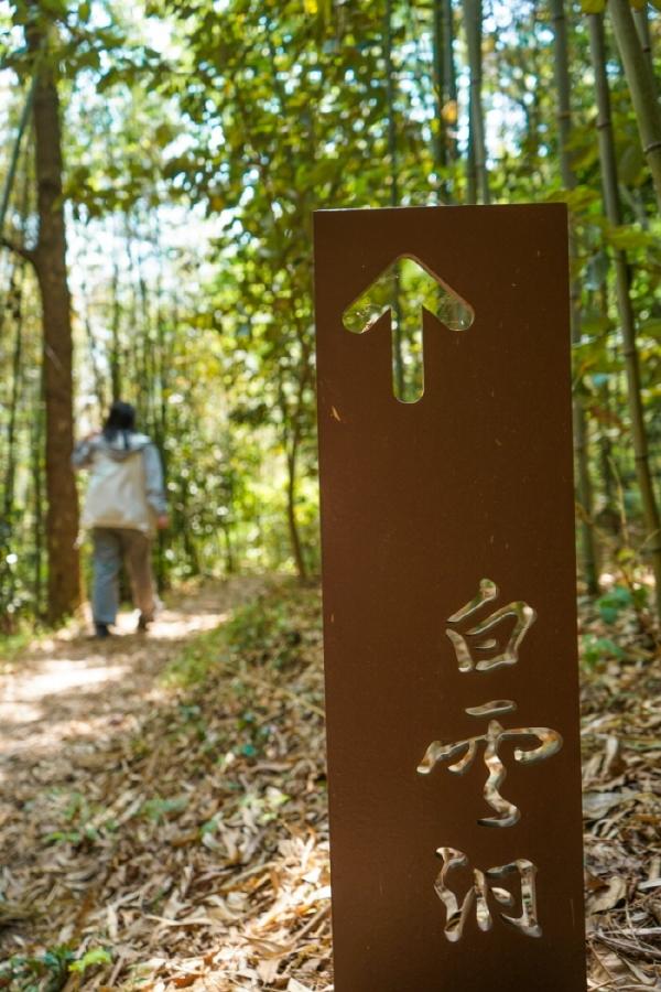 대나무숲을 따라 백운동원림으로