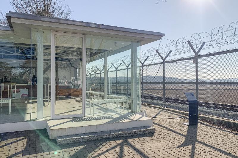 철조망 앞에 우두커니 서 있는 포비 DMZ. 설치작품처럼 보이기도 한다