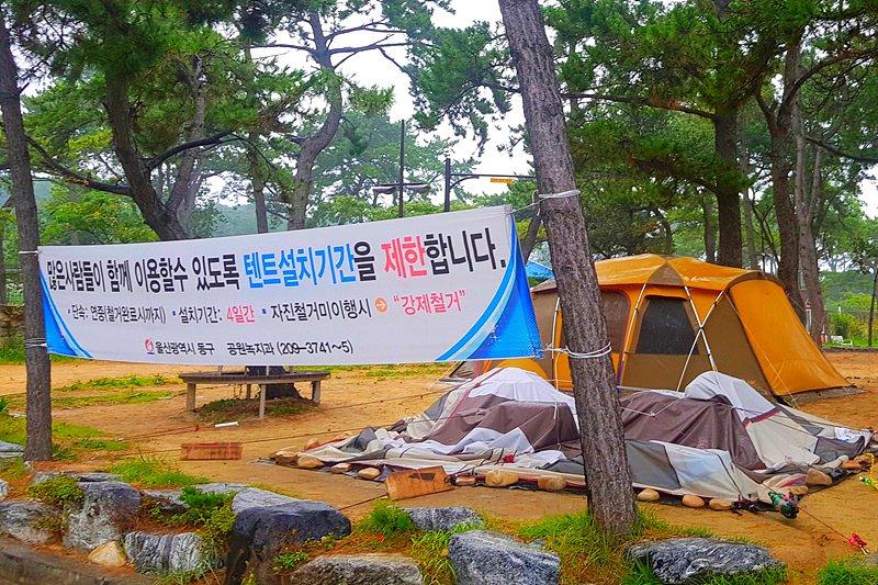 출처 : 울산제일일보
